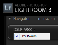 Select a camera from drop down list